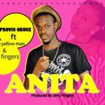 Provis Bruce ft za yellow man & jerry fingers-Anita