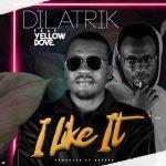 Dilatrik Feat.Yellow Dove- I Like It-  [Prod.By_Reverb]