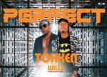 Tokken Feat Willz-Perfect-(Prod By Jayder)
