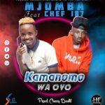 Mjomba Feat Chef 187 - Kamanomo Waoyo(Prod by Cassy Beats)